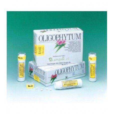 OLIGOPHYTUM AZUFRE (RABANO NE) HOLISTICA 100 MICROCOMPRIMIDOS
