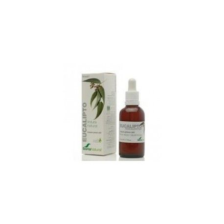 SORIA NATURAL EXT. EUCALIPTO XXI 50ml.