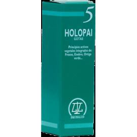 EQUISALUD HOLOPAI 5 ANTIREUMATICO 31 ML