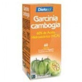 YNSADIET GARCINIA CAMBOGIA 1200MG. 60 COMPRIMIDOS