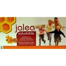 JALEA REAL SALUDABLE TEGOR 20 VIALES