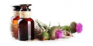 Salud Natural con nuestras plantas y extractos