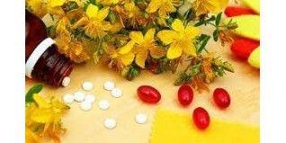 Los mejores fabricantes de plantas medicinales - Herbolario el Druida