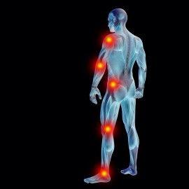 Sistema Osteo-Muscular