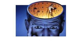 ¿Exámenes? ¿Ayuda para estudiar o tu memoria? - Herbolario el Druida