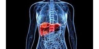 ¿Cómo puedo saber si tengo problemas del hígado?  - Herbolario el Druida